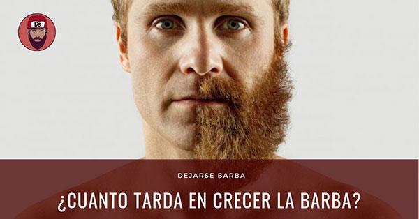 Cuánto tarda en crecer la barba – DejarseBarba.com